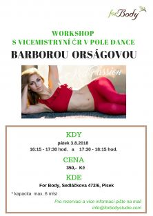 WORKSHOP S VICEMISTRYNÍ ČR V POLE DANCE